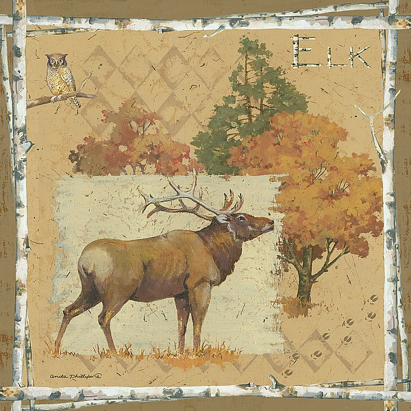 AP1914 - Phillips, Anita - Deer / Elk