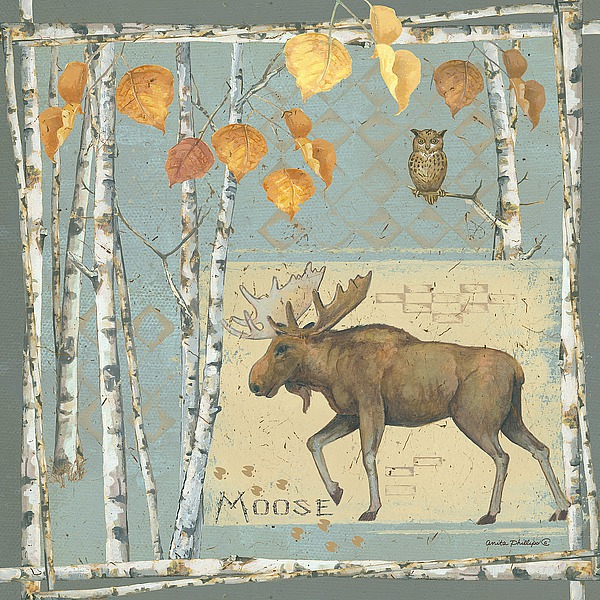 AP1915 - Phillips, Anita - Moose
