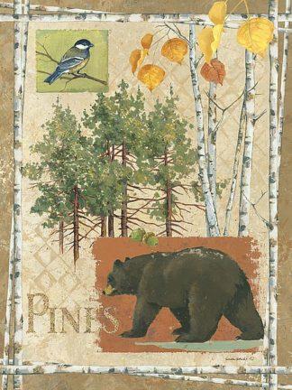 AP1921 - Phillips, Anita - Bl Bear Pines