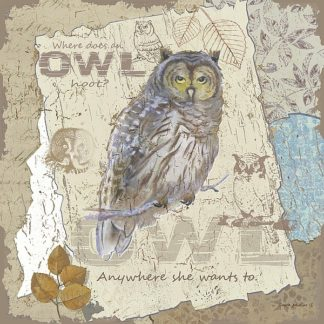 AP1952 - Phillips, Anita - Owl Hoot