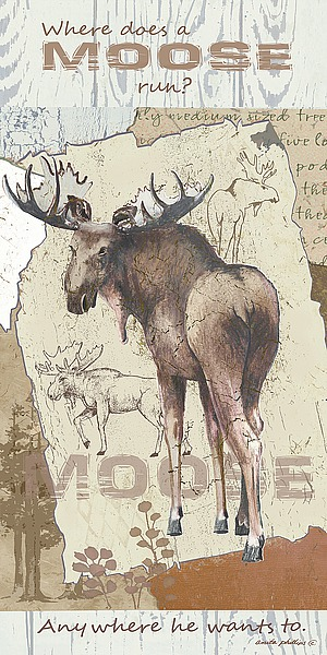 AP1954 - Phillips, Anita - Moose Run