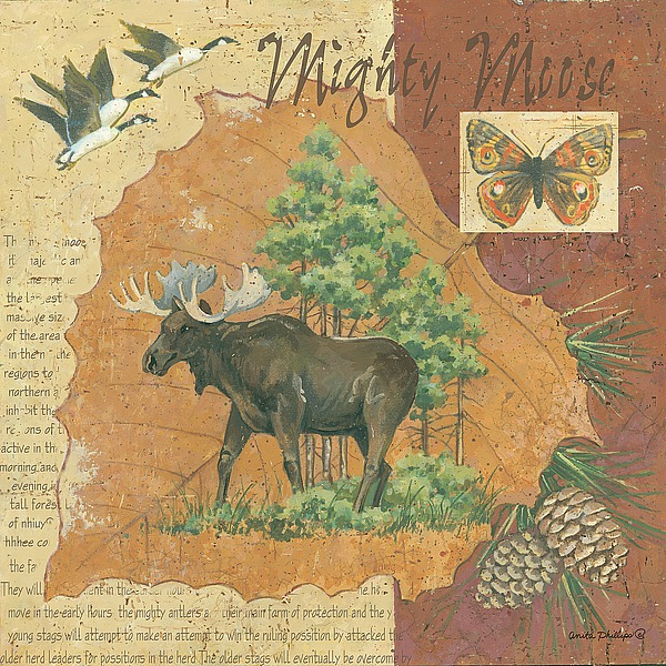 AP1963 - Phillips, Anita - Where Does an Elk Walk