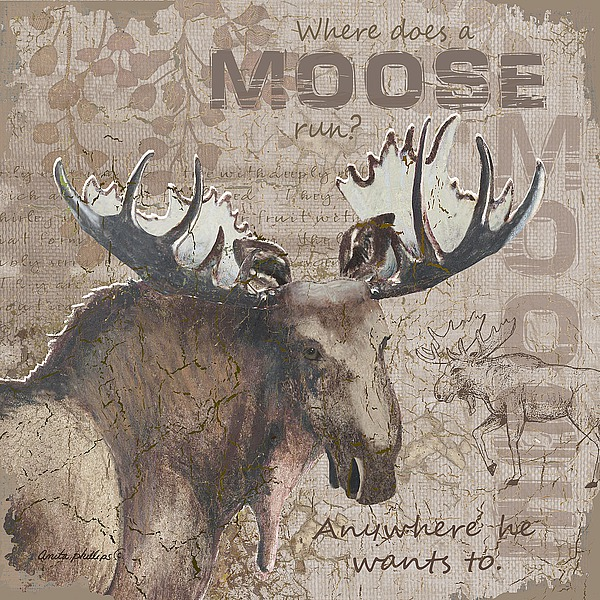 AP1965 - Phillips, Anita - Where Does a Moose Run