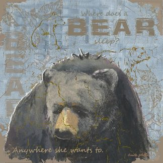 AP1966 - Phillips, Anita - Where Does a Bear Sleep
