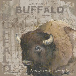 AP1967 - Phillips, Anita - Where Does a Buffalo Roam