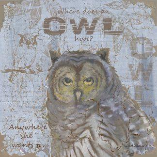 AP1969 - Phillips, Anita - Where Does an Owl Hoot