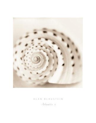 B1166 - Blaustein, Alan - Atlantis 1