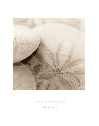 B1167 - Blaustein, Alan - Atlantis 2