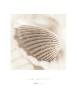 B1168 - Blaustein, Alan - Atlantis 3