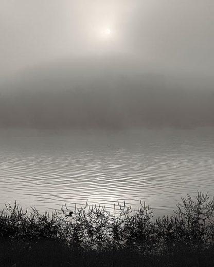 B3543D - Bell, Nicholas - Monochrome Sunrise