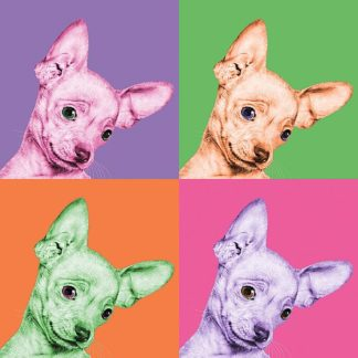 B3551D - Bertelli, Jon - Sweet Chihuahua Pop