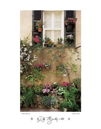 B919 - Barloga, Dennis - Valbonne Window