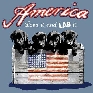 BM1006 - Baldwin, Jim - America