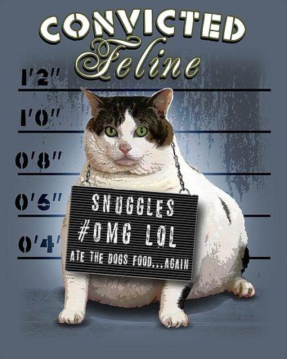 BM1128 - Baldwin, Jim - Convicted Feline