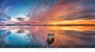 C1053 - Cavanah, Doug - Reflection Day