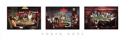 C366 - Coolidge, C. M. - Poker Dogs