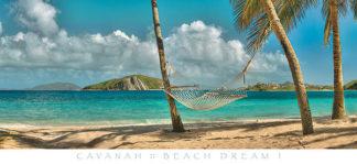 C708 - Cavanah, Doug - Beach Dream I