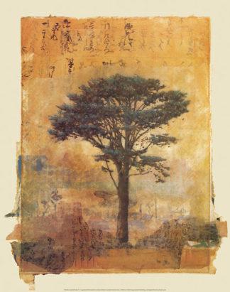 F160 - Farnsworth, Donald - Presidio Cypress Study #1