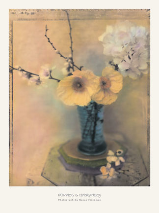 F241 - Friedman, Susan - Poppies and Hydrangea
