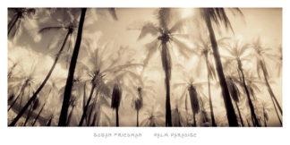 F246 - Friedman, Susan - Palm Paradise