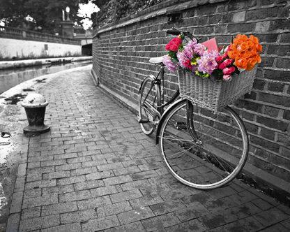 F408 - Frank, Assaf - Bicycle of Love I