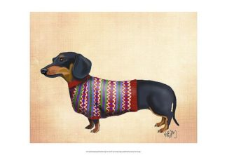 F614 - Fab Funky - Dachshund with Woolly Sweater