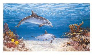 H1103 - Harris, James - Dolphin World