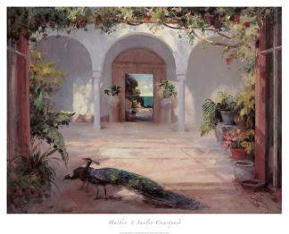 H546 - Haibin - Sunlit Courtyard