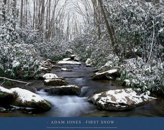 J317 - Jones, Adam - First Snow