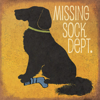 JM10153 - Moulton, Jo - Missing Sock Department