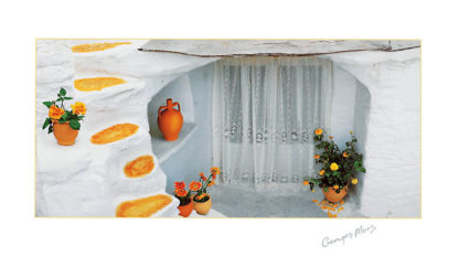 M903 - Meis, George - Orange Pot with Lace Curtains