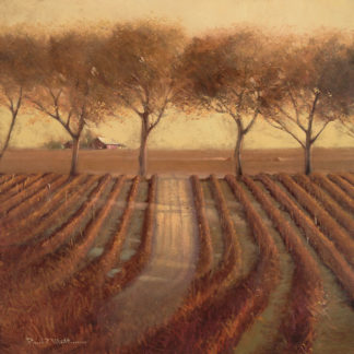 M917 - Mathenia, Paul - Vintage Sunlit Vineyard