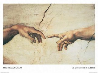 M984 - Michelangelo - The Creation of Adam