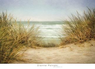 P984 - Poinski, Dianne - Sea Grasses 1