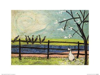 PPR44118 - Toft, Sam - Doris and the Birdies