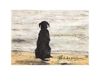 PPR44492 - Toft, Sam - Black Dog Going Home