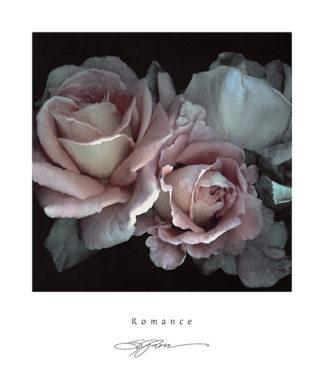 R407 - Rose, S. G. - Romance