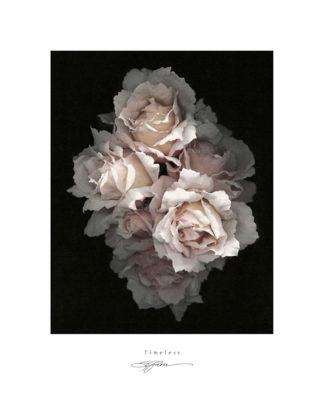 R421 - Rose, S. G. - Timeless
