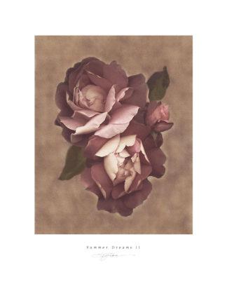 R434 - Rose, S. G. - Summer Dreams II