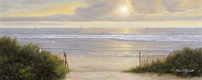 R535D - Romanello, Diane - Summer Moments II