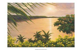 R615 - Romanello, Diane - Wonder of the Tropics