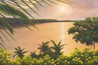 R615D - Romanello, Diane - Wonder of the Tropics