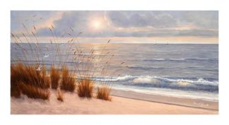 R647 - Romanello, Diane - Seashore