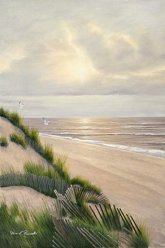 R838D - Romanello, Diane - Morning Tide
