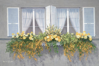 R876D - Romanello, Diane - Spring Window