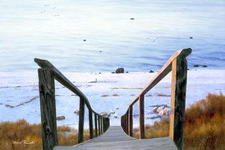 R881D - Romanello, Diane - Sound Beach