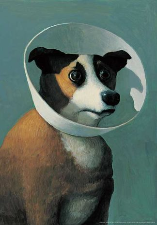 S1046 - Sowa, Michael - Dog with Cone