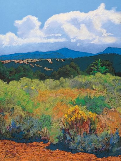 S333D - Silverwood, Mary - Distant Hills