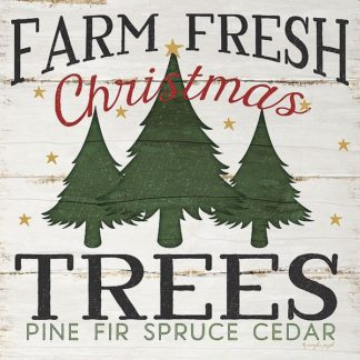 SBJP5155 - Pugh, Jennifer - Farm Fresh Christmas Trees