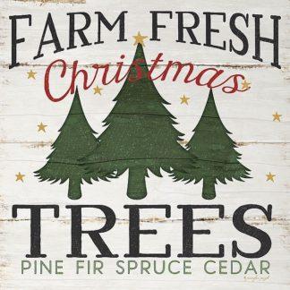 SBJP5155 - Pugh, Jennifer - Farm Fresh Christmas Trees